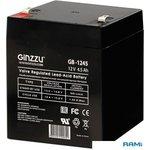Аккумулятор Ginzzu GB-1245
