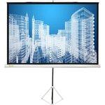 Экран Cactus 150x150см Triscreen CS-PST-150x150