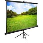 Проекционный экран CACTUS TriExpert 160x160 CS-PSTE-160x160-BK