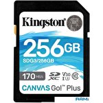 Карта памяти Kingston Canvas Go! Plus SDXC 256GB