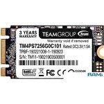SSD Team MS30 256GB TM4PS7256G0C101