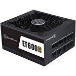 Блок питания SilverStone ET600-MG