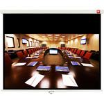 Экран настенный/потолочный Avtek Cinema 240 240 x 200 см