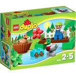 Конструктор LEGO 10581 Forest: Ducks