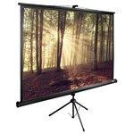 Проекционный экран CACTUS TriExpert 180x135 CS-PSTE-180х135-BK