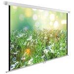 Экран Cactus 200x200см WallExpert CS-PSWE-200x200-WT 1:1 настенно-потолочный рулонный