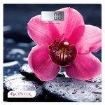 Напольные весы CENTEK CT-2421 (цветок)