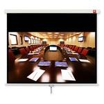 Экран настенный AVTek Business 200 200x200 см (поле 190x119 см)16:10