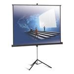 Экран на штативе Classic Libra 200x200 (T 200x200/1 MW-LS/B)