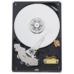 Жесткий диск 80Gb Western Digital WD800AAJB
