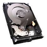 Жесткий диск 1000Gb Seagate ST1000DM003
