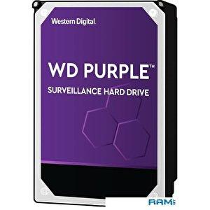 Жесткий диск WD Purple 14TB WD140PURZ