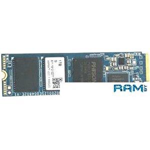 SSD Pioneer APS-SE20G 1TB