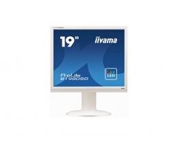 Монитор Iiyama ProLite B1980SD-W1