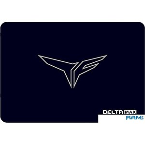 SSD Team Delta Max 25GB T253TM250G3C302