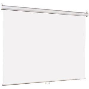Проекционный экран Lumien Eco Picture (LEP-100101)