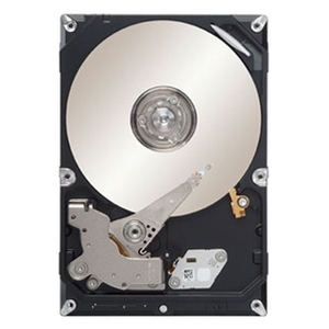 Жесткий диск для сервера 320GB Seagate ST3320311CS